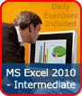 MS Excel 2010 - Intermediate